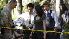 /shows/the_mentalist/episodes/Redwood