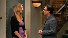 /shows/big_bang_theory/episodes/The Beta Test Initiation
