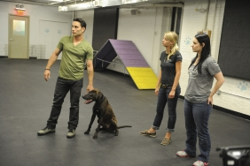 Doggy School