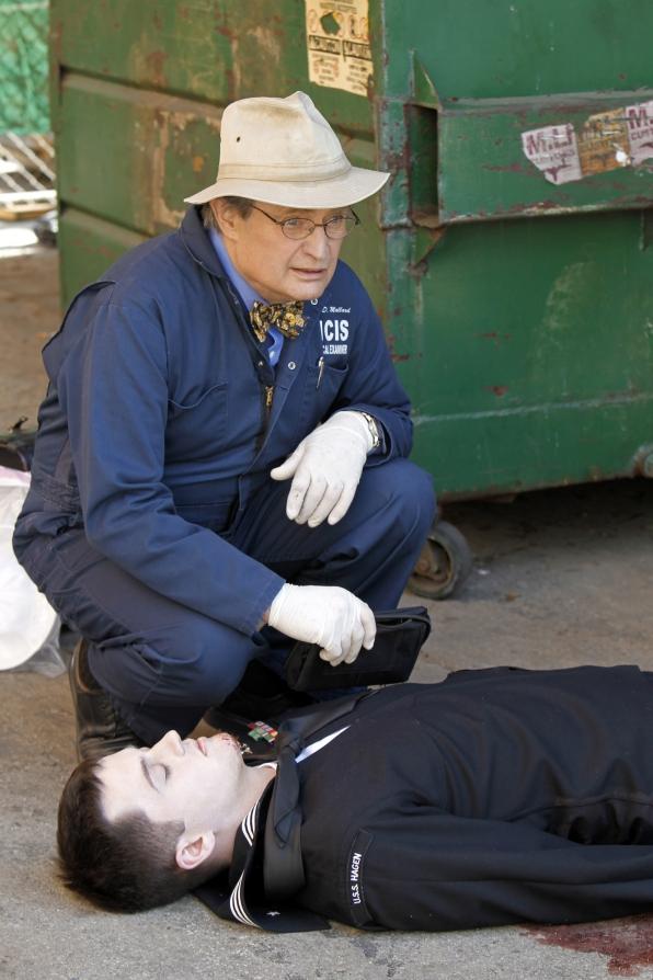 Body Inspection