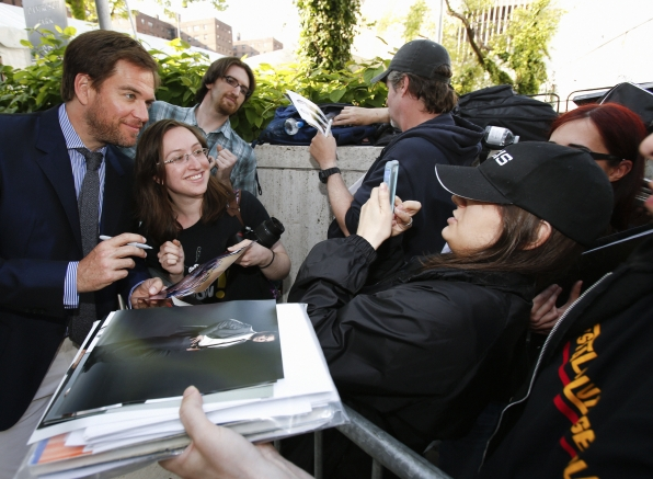 Michael Weatherly on the Red Carpet