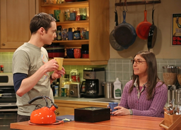 "Sheldon & Amy in ""The Tenure Turbulence"" in Episode 20 of Season 6"