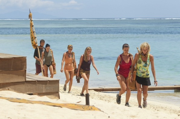 Arriving at the Immunity Challenge