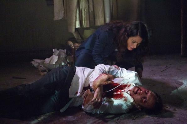 """Brett Partridge in """"The Desert Rose"""" Season 6 Episode 1"""