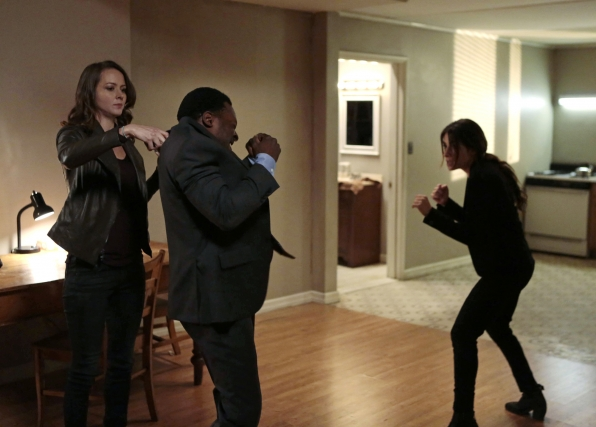 Root and Shaw in Action