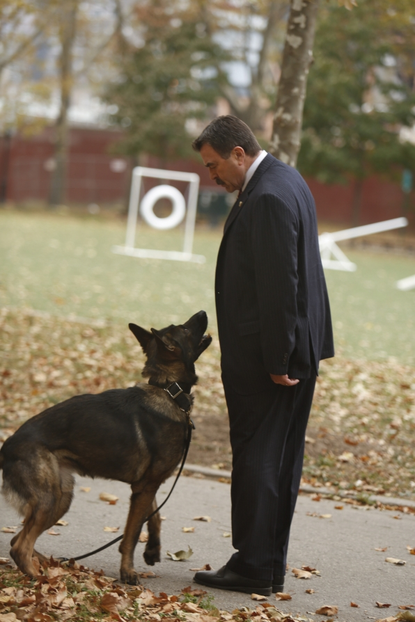 5. Blue Bloods