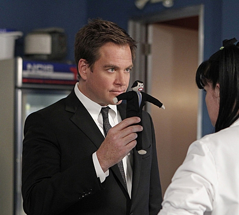 Michael Weatherly - Fairfield, Connecticut - NCIS