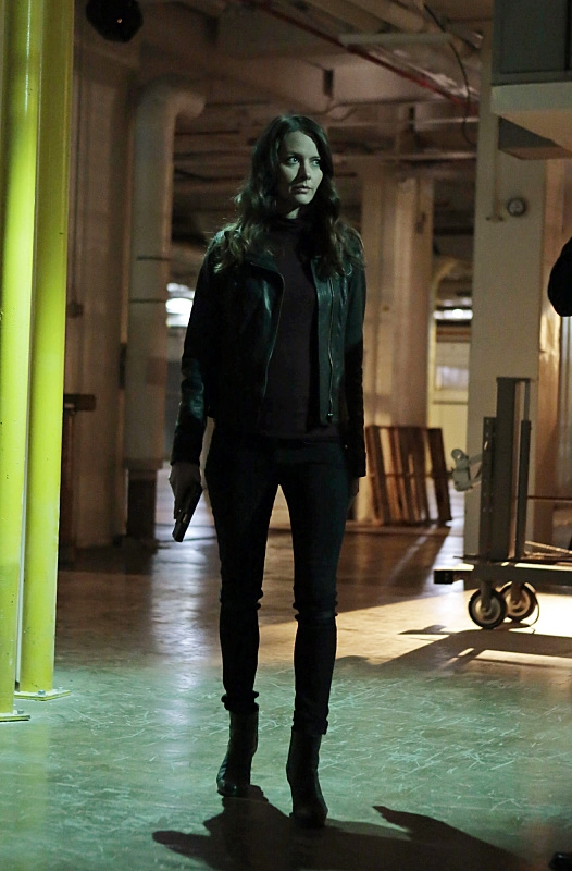 Root searches for Shaw.