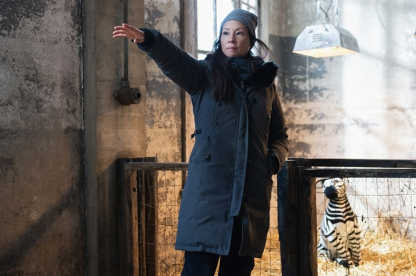 "Lucy Liu directed episode ""The Female of the Species"" which involved filming scenes at the Bronx Zoo and shooting with live zebras."