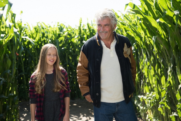 Samantha walks through the corn maze with her grandfather