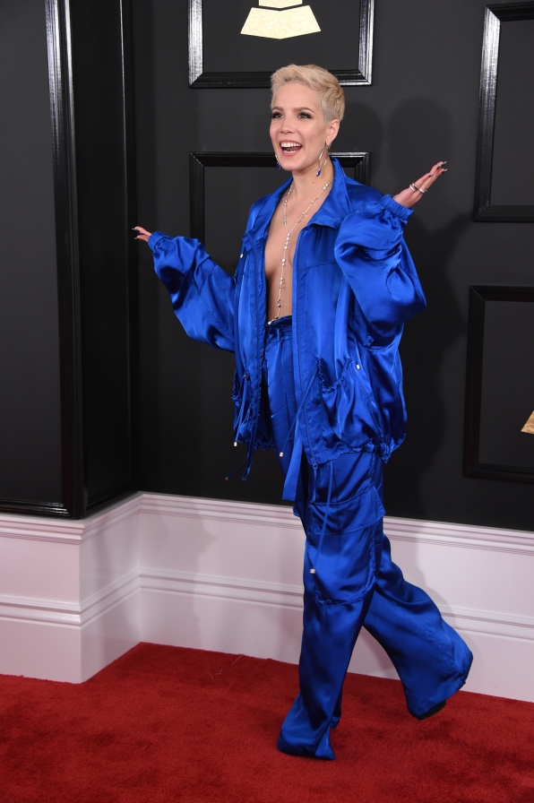 grammy awards 2017 red carpet  stars  style  and more  - page 16 - grammy awards photos