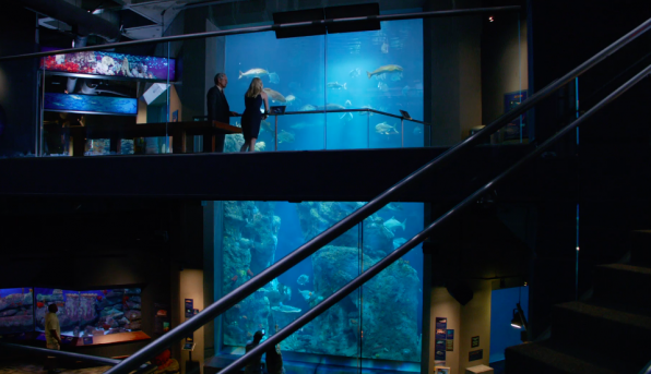 8. This scene was shot inside Charleston's beautiful aquarium after hours.