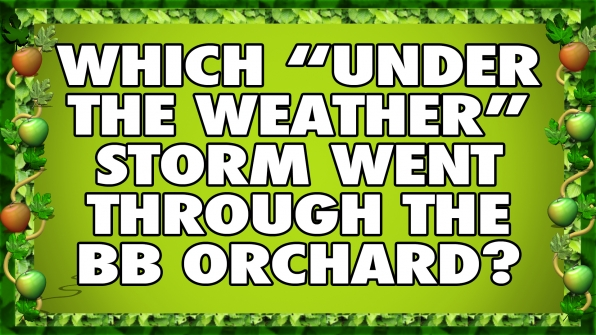 """Which """"Under the Weather"""" storm went through the BB Orchard?"""