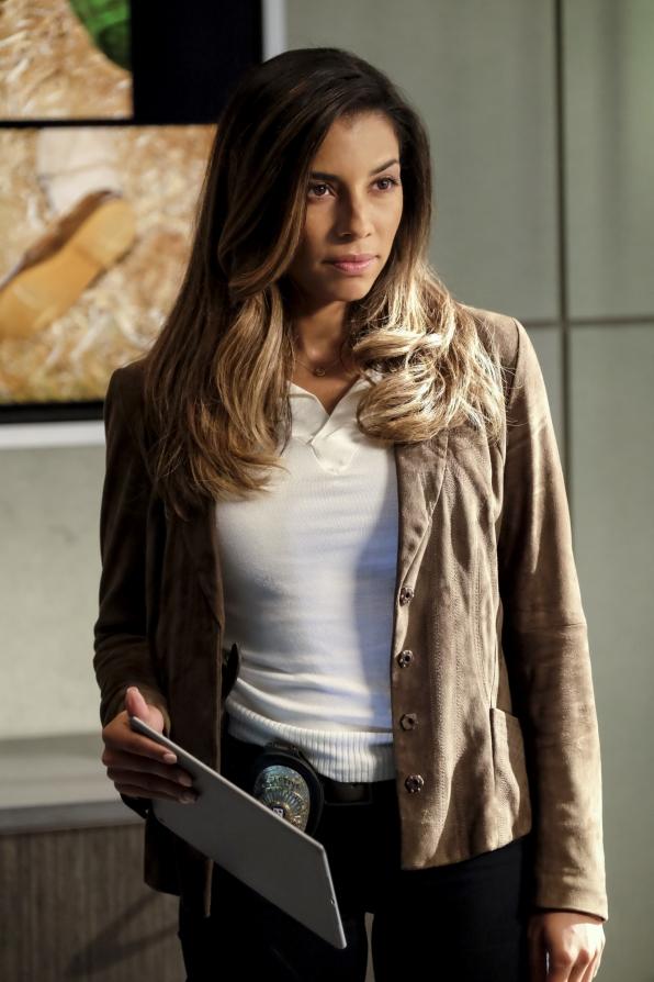 Christina Vidal as Det. Valeria Chavez