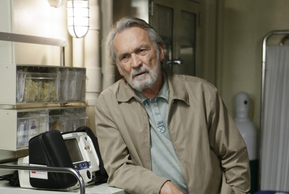 Muse Watson as Mike Franks.