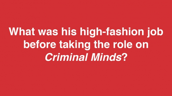 What was his high-fashion job before taking the role on Criminal Minds?