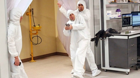 Foul fowl on <i>The Big Bang Theory</i>