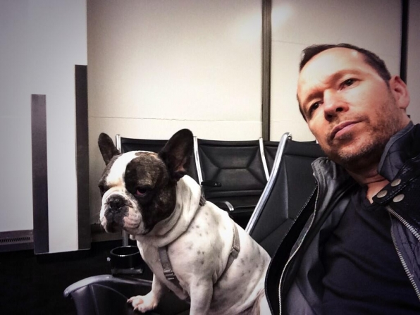 17. Donnie Wahlberg - Blue Bloods