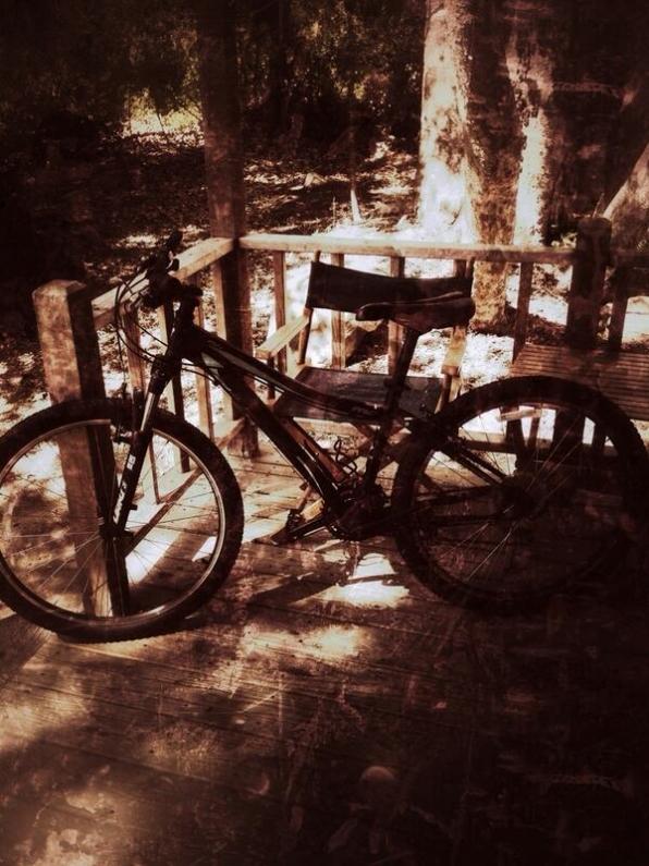34. Bike Riding