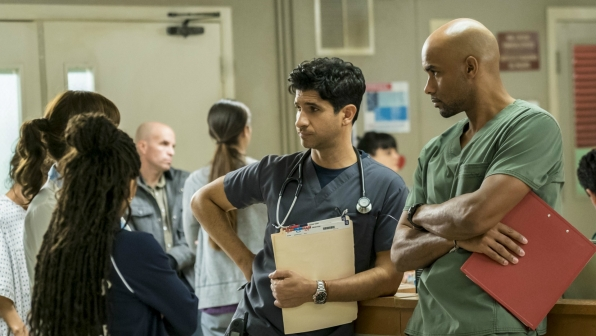 Raza Jaffrey as Dr. Neal Hudson and Boris Kodjoe as Dr. Will Campbell