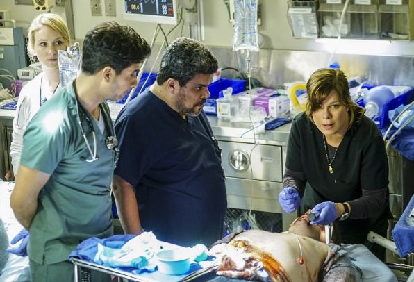 Raza Jaffrey as Dr. Neal Hudson, Luis Guzmán as Jesse Sallander, and Marcia Gay Harden as Dr. Leanne Rorish