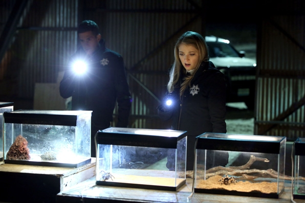 What does the CSI finale have in store?