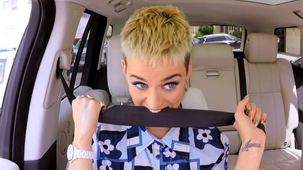 Chomps seatbelt