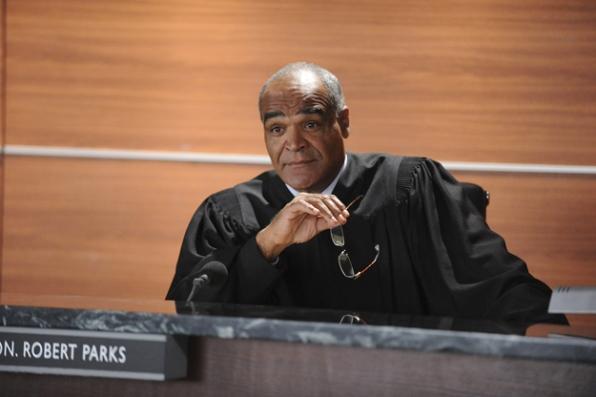 David Fonteno as Judge Robert Parks