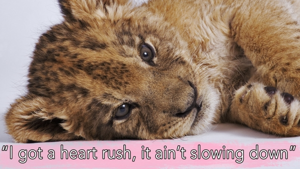 """""""Girl Crush"""" by Little Big Town"""