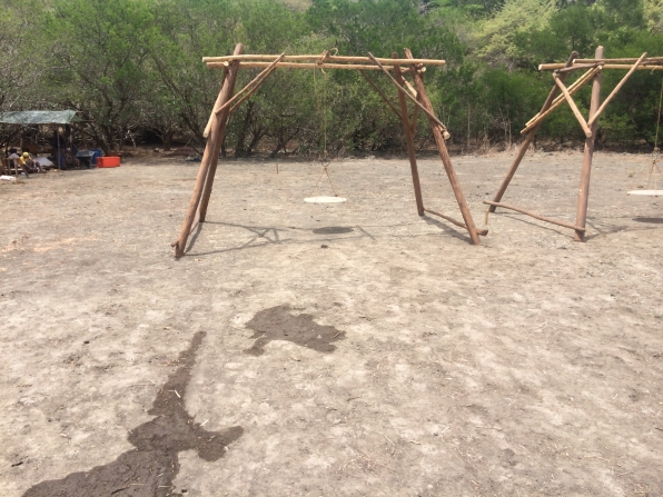 Behind the scenes of the immunity challenge
