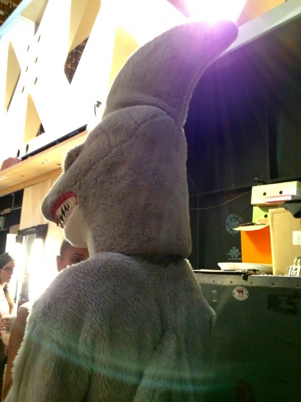 Shark Backstage