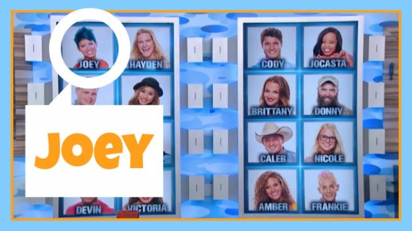 Question: Which former BB Houseguest on the Memory Wall had blue hair?