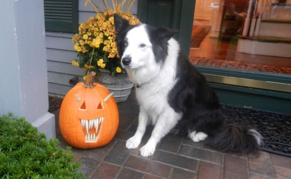 Is that a jack-o'-lantern or self portrait?