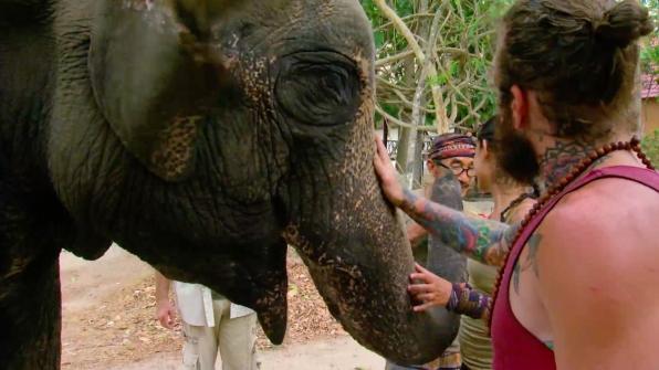 Jason, Tai, and Michele love on Lucky, the elephant.