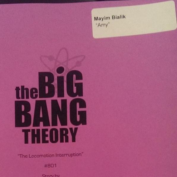 25. The Big Bang Theory - Mayim Bialik