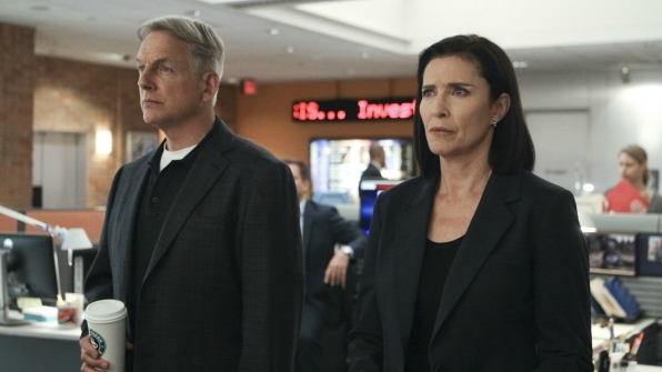 Mimi Rogers as CIA Officer Joanna Teague