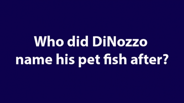 7. Who did DiNozzo name his pet fish after?