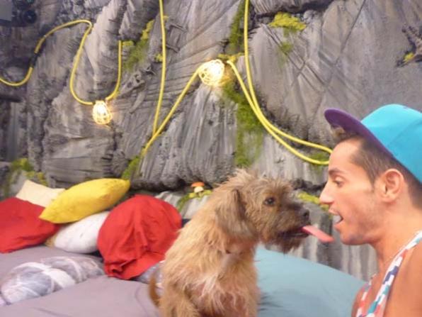 Izzy licks Frankie