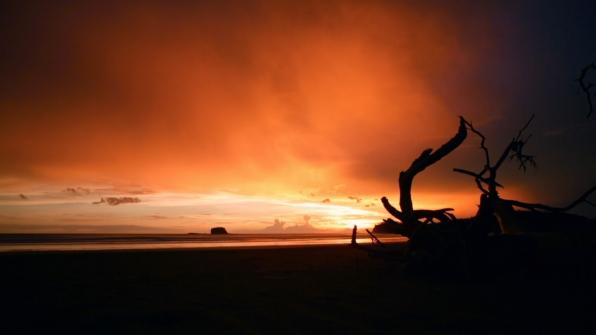 A Survivor sunset