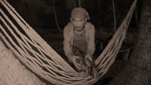 Tai places Mark the chicken on a hammock in the middle of the night.