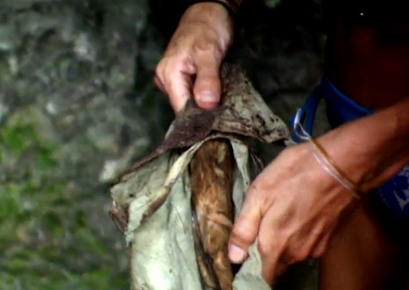2. Jason fell for a stick (<i>Survivor: Micronesia</i>)