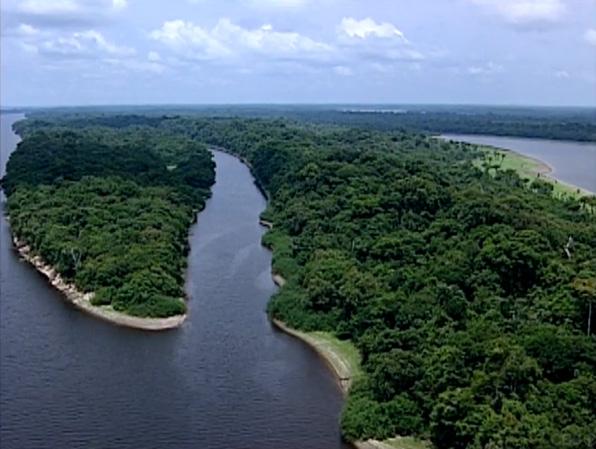 4. Amazon women