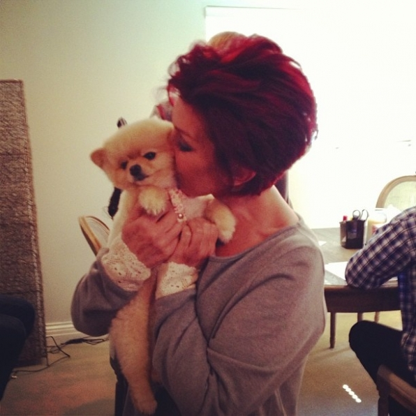 The Talk's Sharon Osbourne