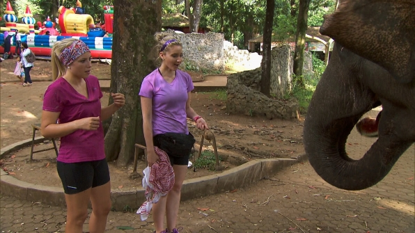 Feeding an elephant in Season 23 Episode 9