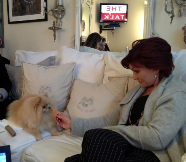 27. Bella always keeps Sharon entertained.