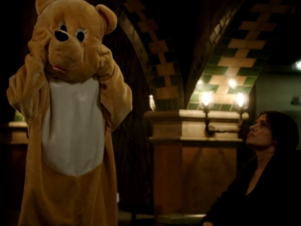 Root transforms into Mr. 'Bear'enstein.