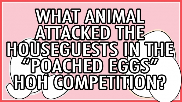 "What animal attacked the Houseguests during the ""Poached Eggs"" HOH competition?"