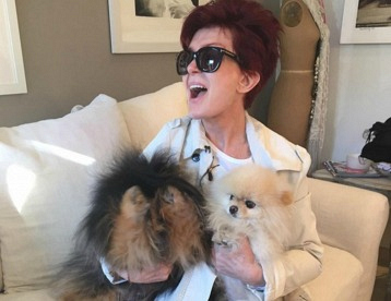 Puppy Love: Get To Know Sharon Osbourne\'s Adorable Dogs